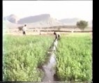 "Maroc 1987 : ""Berbères du grand sud marocain""  1/3"
