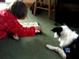 Collie et son chien fly jouant aux serpents et echelles - Collie and fly playing Snakes and Ladders