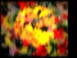 İmam-ı Gazali (r.a)-Sende Öleceksin - 1