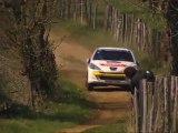 Volant Peugeot 207 2011 - Terre des Causses