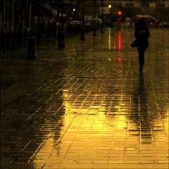 Sunset Boulevard ~ Nuit sur les Champs Elysées ~ Paris ~ MjYj
