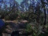Petit chemin forêt à cheval