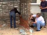 Expérimentation archéologique de montage d'un mur de cabane néolithique à l'université de Corse
