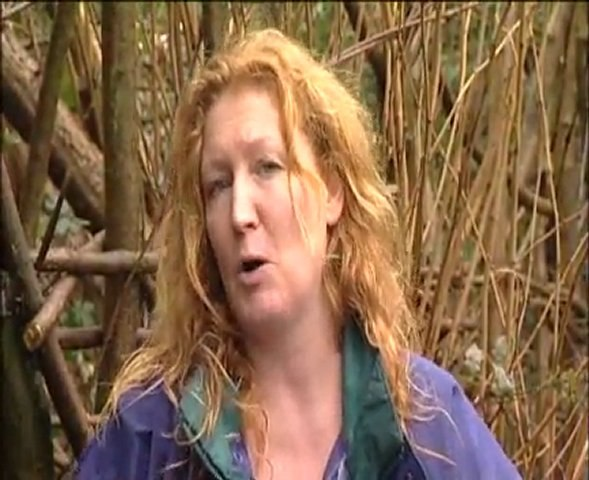 Charlie Dimmock-Bulbs