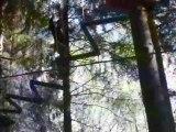 c'est pas très facile de marcher dans les arbres après l'apéro.... suite