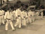 Judo Club Savinois - Tournois par équipe de Saintes 2011