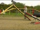 Sylvie Arwen Concours Brest 2011