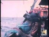 1970 : chalutier en pêche