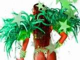 Rio Brazil Samba Costumes for Sale: Brazil Costume ...