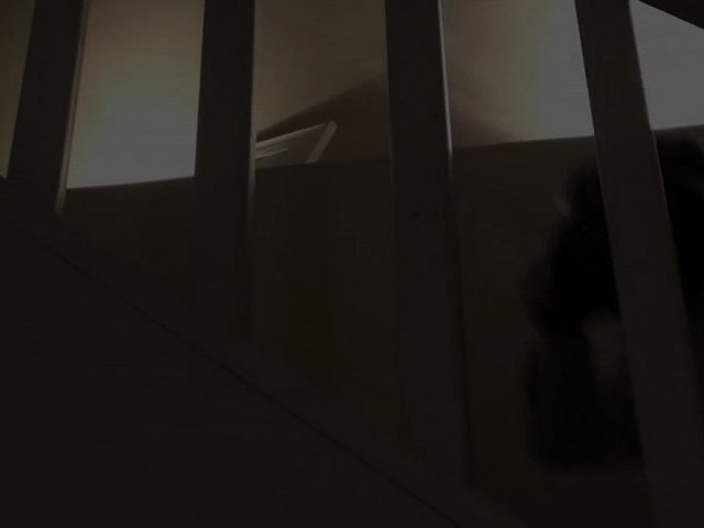 Pub Baby Dark Vador - Que la force soit avec lui