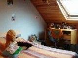 Vente - maison - STE CECILE (62176)  - 200m² - 295 000€