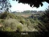 Rustico Mq:130 a Grottaferrata Via Campo Vecchio 0 Agenzia:G