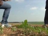 Les agriculteurs aubois au régime sec!