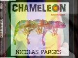 NICOLAS PARGES  Clip CHAMELEON