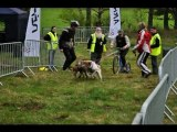 Vidéo très sympa de la course de la Pinatelle des 23-24 avril 2011