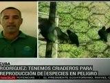 Ciénaga de Zapata, gran reserva de la biósfera cubana