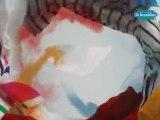 publicité télévision, lingettes anti-décoloration Dr Beckmann, l'ouragan des couleurs, agence de publicité TVLowCost, TVLC