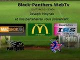 Black Panthers - Centaures