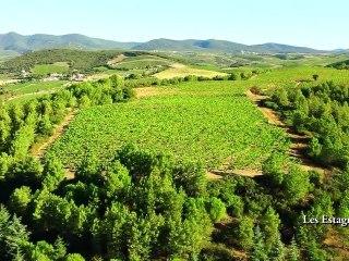 Le domaine du Chateau des Estanilles, vignoble du Languedoc, vu du ciel