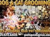 Dogs, Pet Grooming, Grooming Supplies, Sunrise FL - 33351