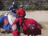 Combats équestres