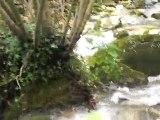 CIMG0658 eaux vives