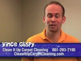 Carpet Cleaning Salt Lake City - Removing Carpet Stains Yourself