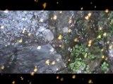 REVELATION DU BETSCHKAIL CLIP VIDEO