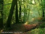 Espaces naturels sensibles d'Ille-et-Vilaine