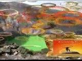 zeogold vulkanmineral