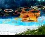 Zeolith Vulkanmineral