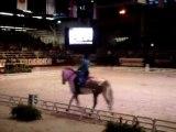 Carrousel poney Bayard UCPA - salon du cheval part3