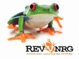 RevvNRG Direct Sales Opportunity | RevvNRG Direct Sales Business