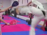 TKD Made Easy Free Taekwondo Videos