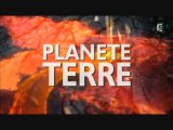 Ep04/06 La Naissance des Mammiferes-Part 1sur3