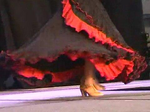 Extrait Performances 2010 au Salon de la Beauté Biarritz 2011