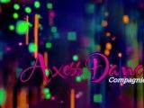 Axess dance - les danseurs de 2011