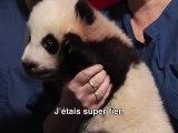 Kung Fu Panda 2 - Making-Of: Le véritable Po