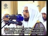 Salah Bukhatir (صلاح بو خاطر)  Sourate Al-Anam (06) Versets 159 à 165