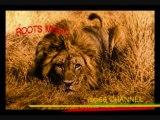 NATTY KING-NO FALSE PRETENCE