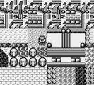 [00] Pokemon Rouge ~ Bugs dans Pokemon Rouge et Bleu