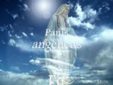 Panis Angelicus Karaoke Version