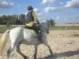Poney-club. Les chevaux. Sauts. 6) 25/06/2011. SDC10649