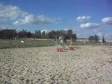 Poney-club. Les chevaux. Sauts. 4) 25/06/2011. SDC10644