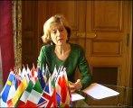 L'aide de l'UE à l'Irlande : une réponse aux symptômes de la crise, non aux causes