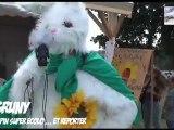 Grüny, le lapin SUPER  Ecolo & ... Reporter, aux Vieilles Charrues 2011