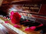 Douce Mélodie Romantique