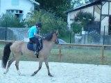 P1410605 CHEVAL - ECURIES HABAS - Cours d'équitation