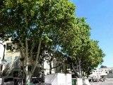 La place du palais des papes à Avignon