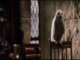 Harry Potter and the Order of the Illuminati écrite par J. K. Rowling et adapté au cinéma par le réalisateur Chris Columbus